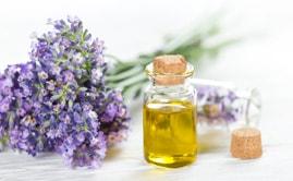 Противовоспалительное и тонизирующее эфирное масло лаванды