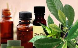Масло чайного дерева оздоровит проблемную кожу